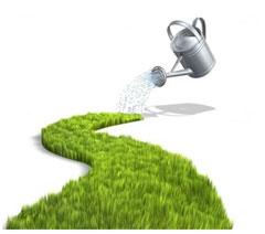 kakuiu_vodu_ispolzovat_dlia_poliva_rastenii1 Органический и естественный рост бизнеса
