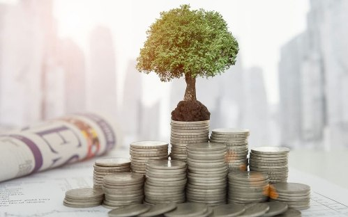 sehm-zell-1 Как эффективно инвестировать с Rombus Group